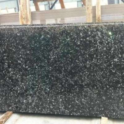 Black and White Seashell Marble Slabs Profile Picture